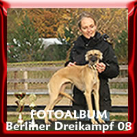 Zur Fotogalerie Dreikampf Berlin