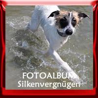 """Zur Fotogalerie """"Cosi fan tutte Silkenvergnügen"""""""