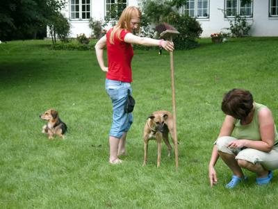 Janina Stannek beim Dogdance
